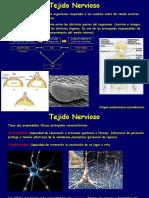 9.-Histología. Tejido Nervioso