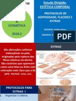 Apresentação MEIRE.pdf