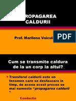 propagare_caldura