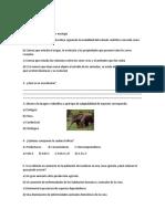 Prueba Final 4 Basico Lenguaje Periodo4