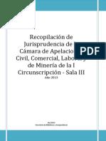 CCivNqNSalaIII.pdf