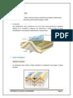 Informe Del Morro Solar - Copia