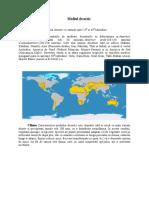 Mediul Desertic Petrica
