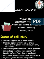2 Cell Injury