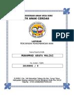 Conto Raport k 13 Paud (1)