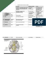Resumo de Nervos Cranianos