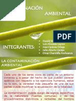 Trabajo Contaminación Ambiental