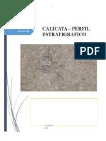 iNFORME CALICATA