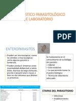 diagnostico parasitologico