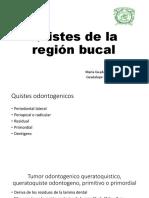 Quistes de La Región Bucal