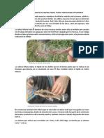 Practicas Realizadas en Centro Textil Tejido Tradicional Pitumarca