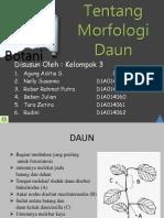 Ppt Morfologi Daun Kel-3