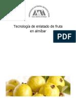 Tecnología de Enlatado de Fruta en Almíbar