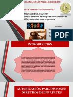 Proceso de Ejecucion_exposicion