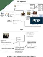 Diagrama de Flujo Etapas Proceso Penal
