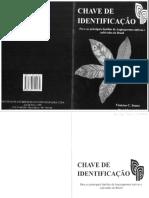 Chave de Identificação de Angiospermas