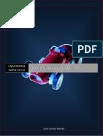 Apostila-de-RM--Estatica.pdf