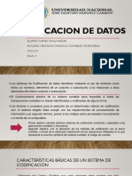 CODIFICACION DE DATOS.pptx