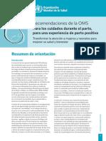 Recomendaciones OMS.pdf