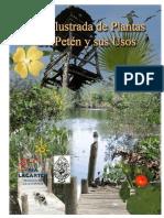 73495684-Guia-Ilustrada-de-las-plantas-del-Peten-Yucatan(1).pdf