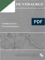 Flora de Veracruz Saxifragaceae