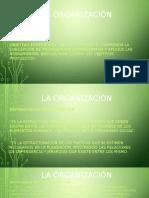La Organización I