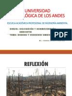 6.1 Deberes y Derechos Ambientales - i