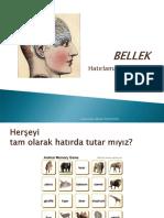 2BELLEK1