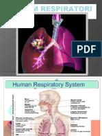 1 Sistem Respiratori.pptx