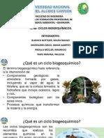 DIAPOSITIVAS CICLIOS BIOGEOQUIM