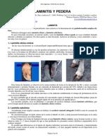 41-LAMINITIS_PEDERA.pdf