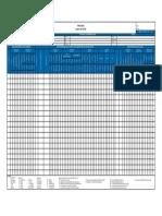 formato mapeo.pdf