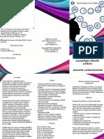 Etnologie_antropologie_culturala_si_folclor.pdf