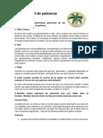 especialidad_de_palmeras.docx