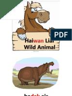 Haiwan Liar