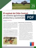 Ficha29 El Espinal de Chile Central