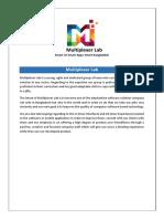 Multiplexer Lab Updated Profile
