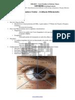 Acupuntura_ocular.pdf