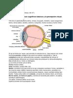 Apuntes PCA Tema 01 - 06
