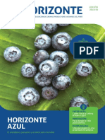 Revista Horizonte 2018-III