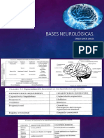 bases neurológicas.pptx