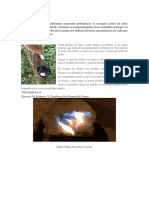 Procesos de polimerizacion en ensayos de temperatura