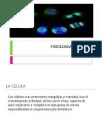 fisiología celular.pptx
