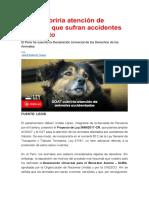 SOAT cubriría atención de animales que sufran accidentes de tránsito