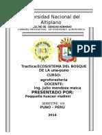 AGRARIAS.doc