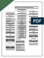 Carta Organisasi Skm