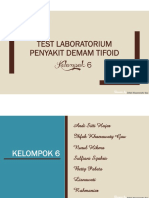 Test Laboratorium Demam Tipoid (KLP 6).pdf