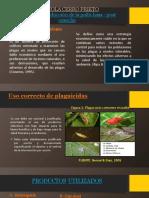 Agricola Cerro Prieto