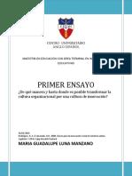 ENSAYO 1 cuestionamiento.docx