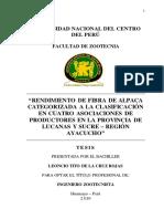 De La Cruz Rojas Huancayo 2010